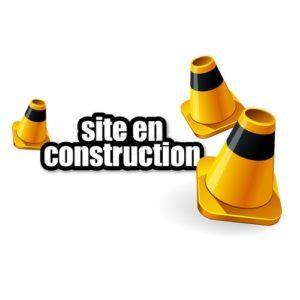 MJC Bussières - Construction