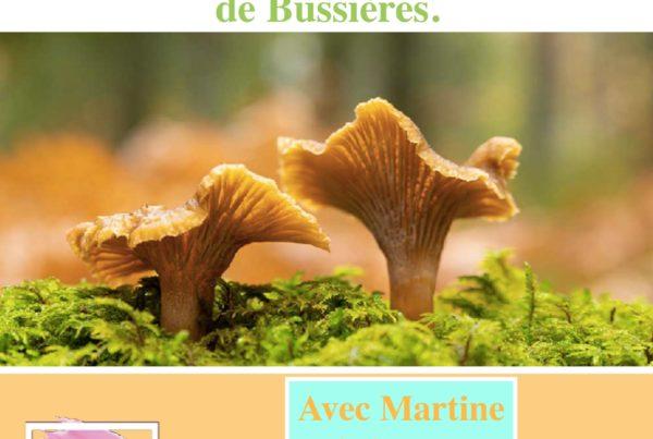 MJC Bussières - sortie champignons 2021